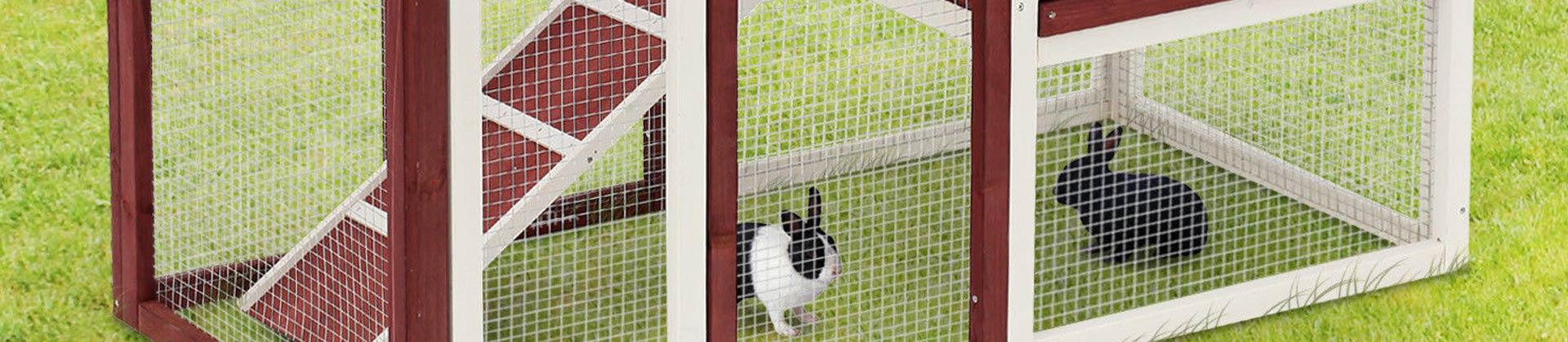 Kaninchenstall Test 2019